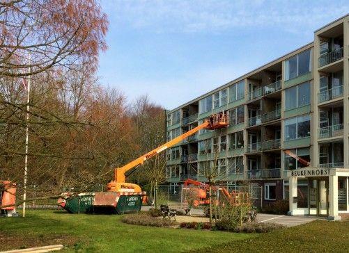 Beukenhorst - Boswijk